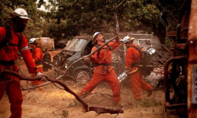 Photo of inmate firefighters in Yosemite