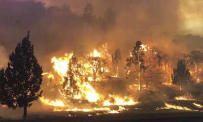 Photo of the Klamathon Fire in Northern California