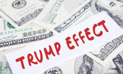 100 dollar bills labelled Trump Effect