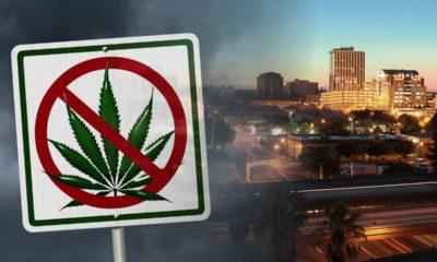 "Photo combination of Fresno skyline and ""No Marijuana"" sign"