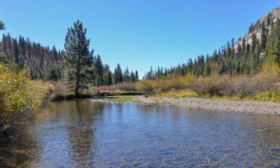 Photo of the San Joaquin River