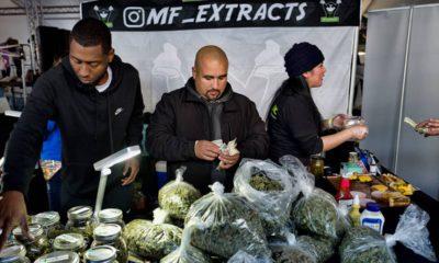 Photo of marijuana vendors