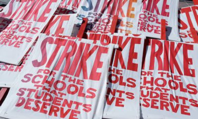 Photo of picket signs