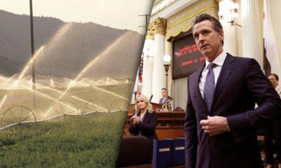 Photo of San Joaquin Valley and Gavin Newsom
