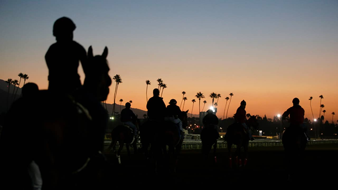 Photo of riders and horses at sunset