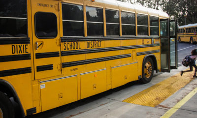 Photo of school buses at Dixie School District