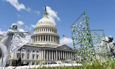 Photo of an art installation on display outside the Capitol