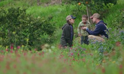 """Photo of screen grab from """"The Biggest Little Farm"""" trailer"""