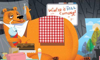Photo of fat bear illustration