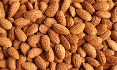 Photo of almonds