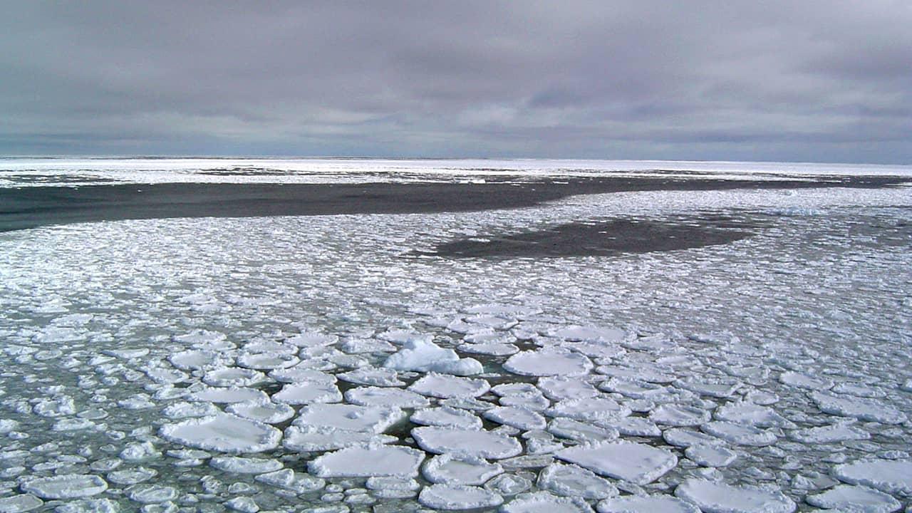 Photo of sea ice
