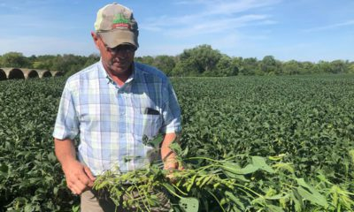 Photo of farmer Randy Miller and his soybeans
