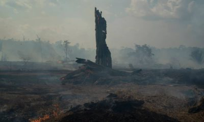 Photo of a forest fire in Altamira in Brazil's Amazon