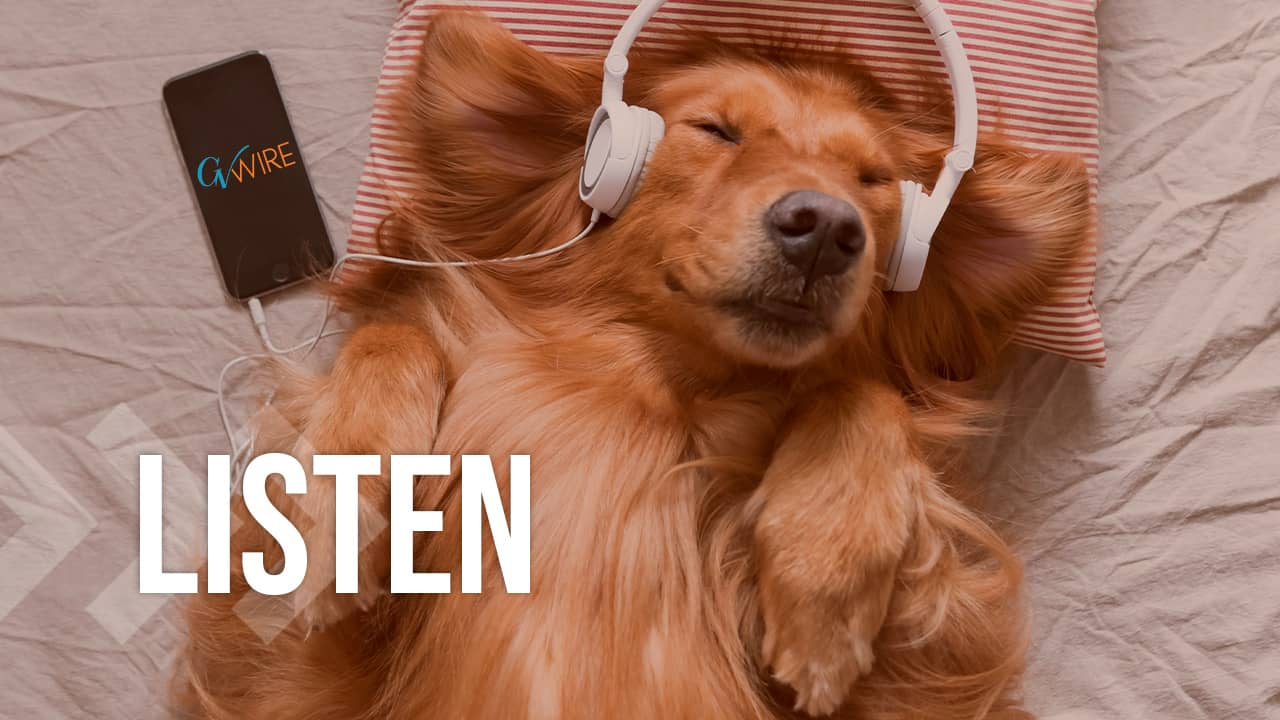 Photo of a dog listening to headphones