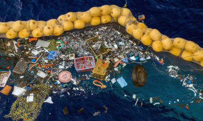 Photo of trash being retained in front of a cork line in the Pacific Ocean
