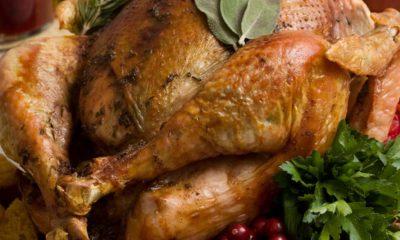 Photo of turkey