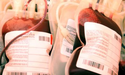 Photo of bags of plasma concentrate and blood