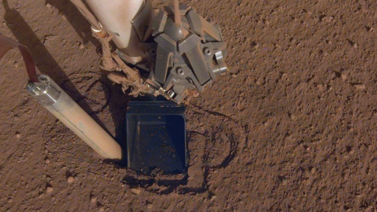 Photo of NASA's mole, InSight