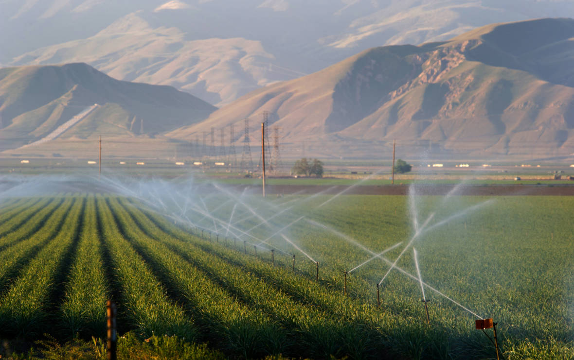 Photo of irrigation sprinkers watering a farmOhi