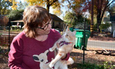 Photo of Elizabeth Watling holding her cat Tampopo
