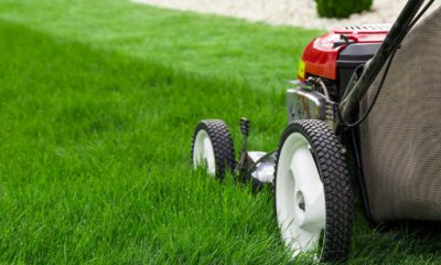 Photo of a lawn mower