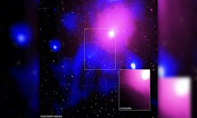 Photo of the Ophiuchus galaxy cluster viewed in a composite of X-ray, radio and infrared data
