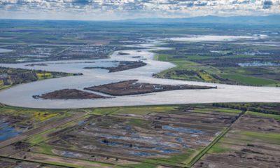 Photo of the San Joaquin River as it flows through California's Delta