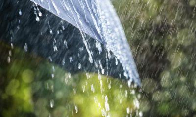 rain sliding off a black umbrella
