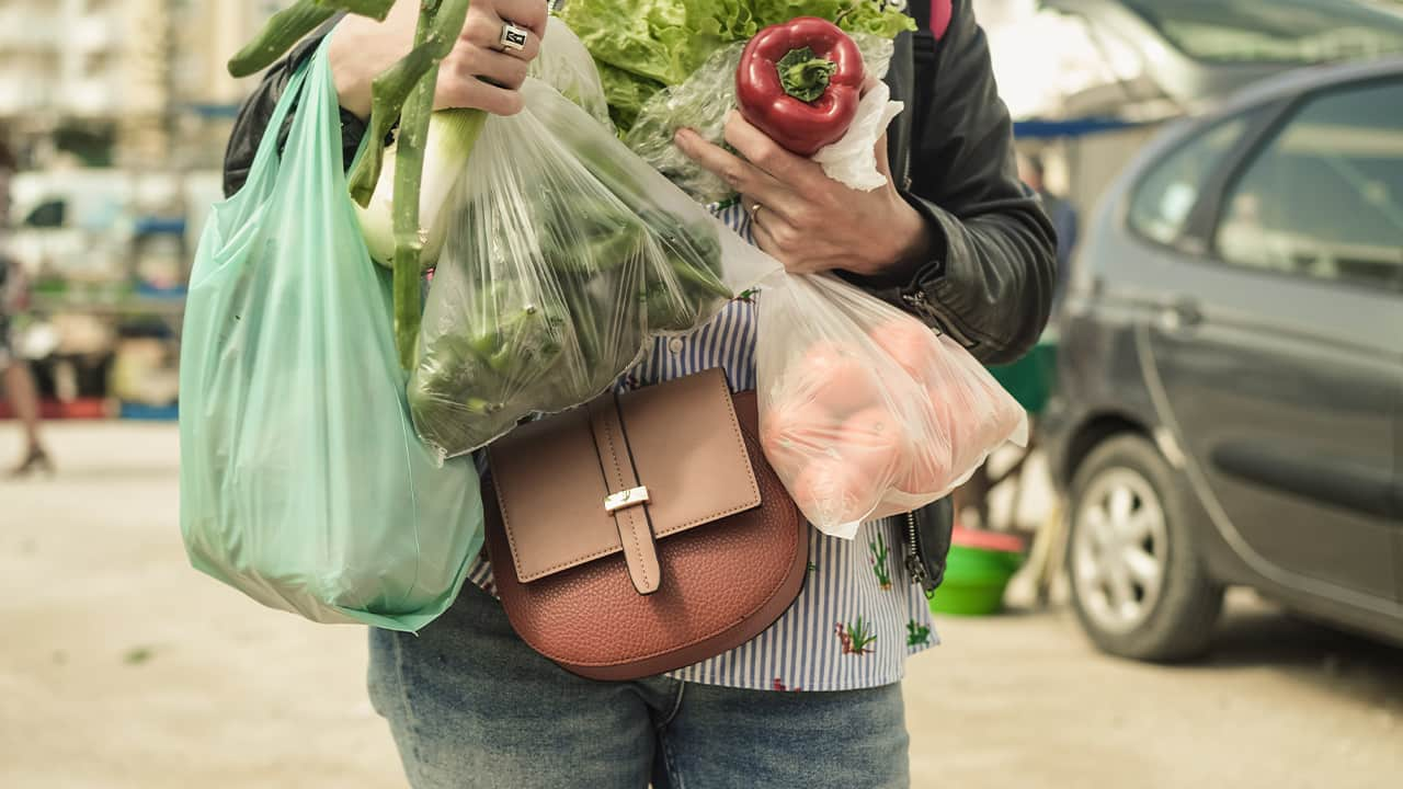 Photo of a woman holding grocery bags