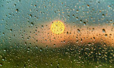 picture of sun poking through raindrops