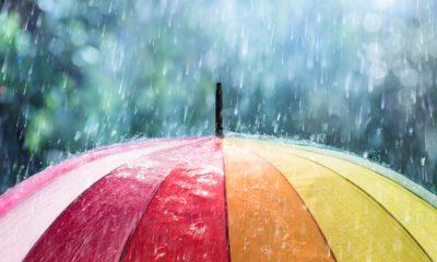 photo of a rainbow colored umbrella