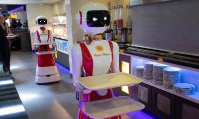 Photo of a robot waiter