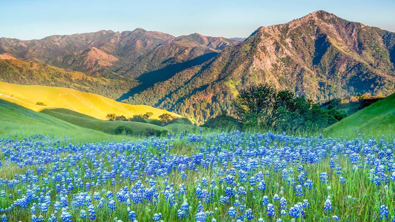 Photo of Big Sur