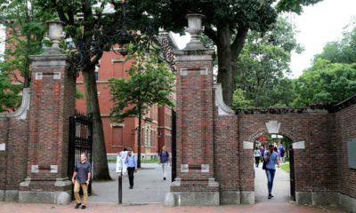 Photo of people at Harvard