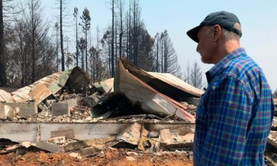 Photo of wildfire aftermath