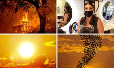 Pictures of challenges facing Fresno, California: heatwave, blackouts, potentially rabid bats, and COVID-19