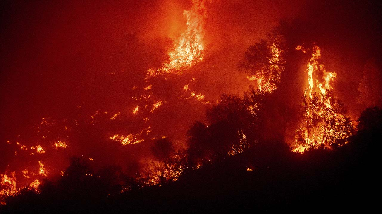 Latest: More Than 800 Firefighters Battle Growing KNP Complex